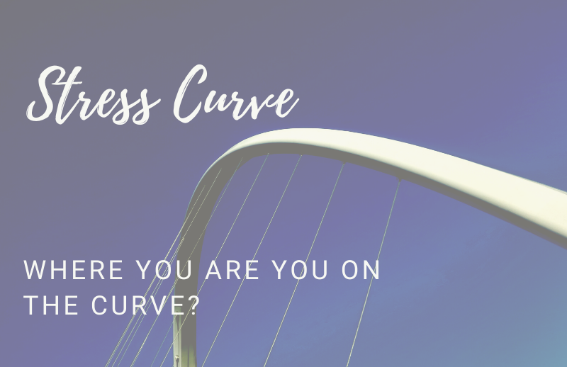 Auckland Physiotherapy Blog - Stress Curve