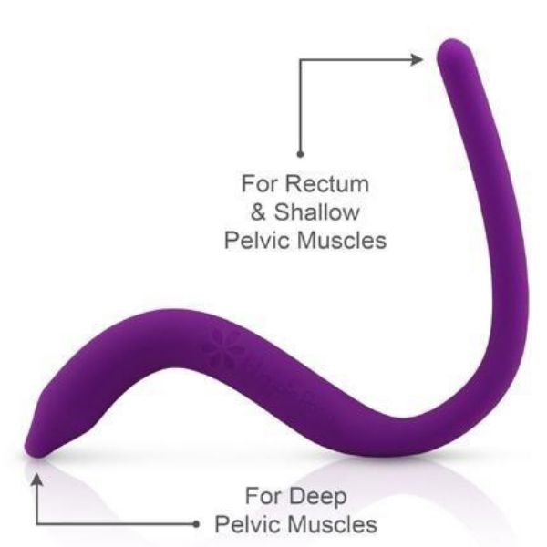 Auckland Physiotherapy Womens Health - Wand Details